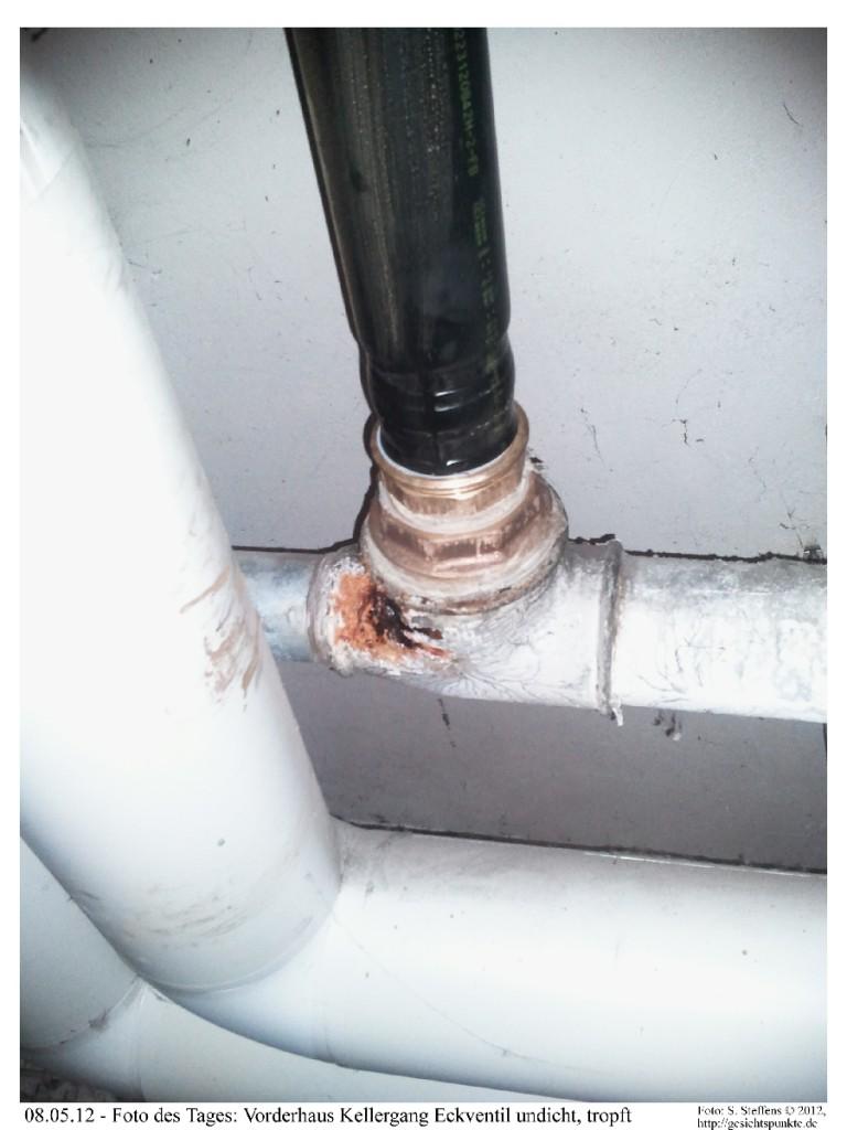 Foto des Tages: Wasserleitung, Eckventil